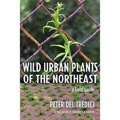 Peter Del Tredici's Wild Urban Plants of the Northeast serves not only as an absorbing field guide to spontaneous urban plants but also as a razor-sharp critique of how we value urban plants in general. Erosion Control, Invasive Plants, Garden Landscape Design, Landscape Architecture, Thing 1, Urban Life, Field Guide, Ecology, Thought Provoking