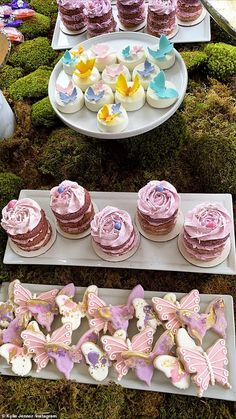 Craving any sweet tooth's! There was also plenty of desserts including cup cakes for the guests to enjoy Butterfly Birthday Party, Butterfly Baby Shower, Fairy Birthday Party, Garden Birthday, Baby Birthday, 1st Birthday Parties, Birthday Party Decorations, Birthday Ideas, Butterfly Party Decorations