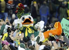 Puddles, the Oregon duck mascot!  One of the best mascots in college sports.