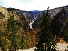Facts You've Never Heard About Yellowstone
