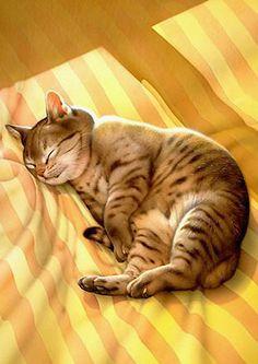 Makoto Muramatsu (b. 1947), sleeping cat painting