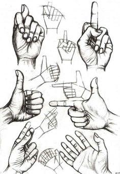 Hams fingers