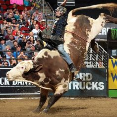 See some of the world's best bull riders go head-to-head at the PBR Built Ford Tough Series in #Tulsa. The competition is fierce and the exciting show is complete with pyrotechnics that will keep you on the edge of your seat.