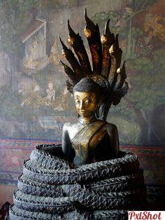 Arta meditației | Cultura Orientala - PxlShot.ro