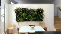 Wall Gardens, Living Walls in Home Decor - WSJ.com