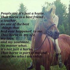 People say it's just a horse. That horse is a best friend, a teacher, an one of the best things that had ever happened to me. That horse is my life, my love, & my soulmate . No matter what, it's not just a horse. That horse is part of me & made me who I am today.
