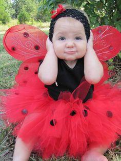 Tutu ladybug