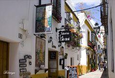 Rincones de Andalucía: calle de Córdoba / Places in Andalucía: a street in Córdoba, by @MamiRizosa