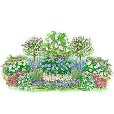 Easy-Care Summer Shade Garden Plan This mix of flowering shrubs and perennials will fill your yard with color all summer long - plus provide interest in spring, fall, and winter. - My Cottage Garden Garden Shrubs, Shade Garden, Garden Plants, Garden Landscaping, Shade Landscaping, Landscaping Ideas, Long Blooming Perennials, Shade Perennials, Shade Plants