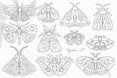 Boho moth clipart, Butterfly svg, Line drawn moth svg, Butterfly clipart Baby shower line art Nursery wall art Mystery symbol Commercial use
