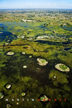 Okavango delta, Botswana - the world's largest inland delta (15,000 km² )