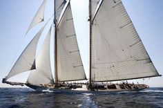 """Eleonora- a modern version of the classic """"Westward""""- one of the prettiest sailing yachts ever."""