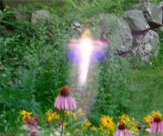 An Angel Orb in the garden. They so resonate with flowers and nature. From Diana Cooper's Orb Gallery. Angel Clouds, Real Angels, Angel Aesthetic, Angel Pictures, Ghost Pictures, Cybergoth, Fairy Land, Psychedelic Art, Faeries