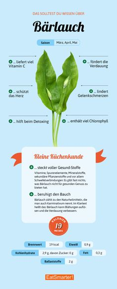 Das solltest du über Bärlauch wissen | eatsmarter.de #bärlauch #infografik #gesund #eatsmarter #like #lecker #vegan #veggie #saisonal #regional #gesundkochen #abnehmen #gesundernähren #diät