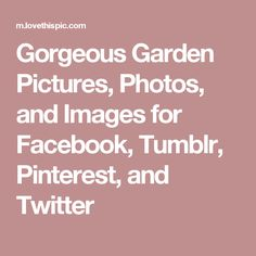 Gorgeous Garden Pictures, Photos, and Images for Facebook, Tumblr, Pinterest, and Twitter
