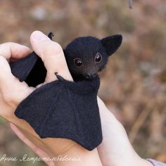Baby Animals Getting Killed Videos. Baby Animals Joey as Pictures Of Baby Animals In The Wild Cute Puppies, Cute Dogs, Cute Babies, Cute Baby Bats, Baby Animals Pictures, Cute Animal Pictures, Animals Images, Cute Little Animals, Cute Funny Animals