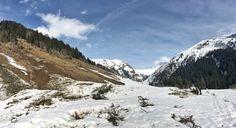 Wer hilft uns, die Verwüstungen auf der Flittner-Alm im Valsertal zu beseitigen? Mountains, Nature, Travel, First Aid, Summer, Naturaleza, Viajes, Traveling, Natural
