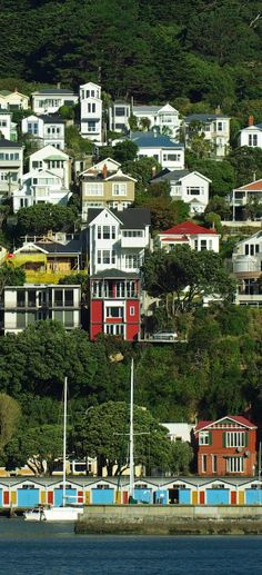 Victorian Villas, Chaffers, Wellington Harbour, New Zealand. ** Wellington is a really lovely city and the views are magnificent. New Zealand North, New Zealand Travel, Auckland, Wellington New Zealand, Wellington City, Places Around The World, Around The Worlds, New Zealand Houses, New Zealand Cities