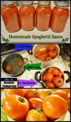 Homemade Spaghetti Sauce canning recipe - fresh from your garden! This easy homemade spaghetti sauce recipe even teaches you how to blanch tomatoes! Fresh Tomato Spaghetti Sauce, Canning Homemade Spaghetti Sauce, Spaghetti Sauce Easy, Homemade Sauce, Tomatoe Sauce, Pasta Sauce Recipe For Canning, Best Canned Spaghetti Sauce Recipe, Pasta Sauce Diy, Canning Marinara Sauce