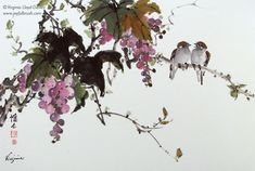 Chinese brush paintings of bamboo, grapes, lotus and birds by Virginia Lloyd-Davies of Fairfield, VA Watercolor Images, Watercolor Bird, Watercolor Paintings, Koi Fish Drawing, Fish Drawings, Chinese Brush, Chinese Art, Chinese Painting Flowers, Grape Tree