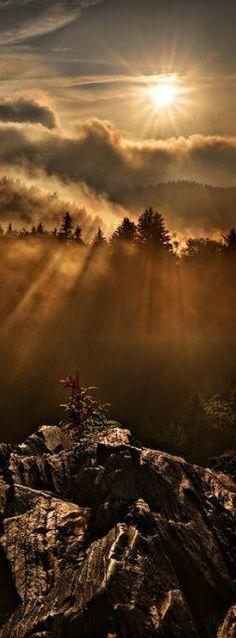 Appalachian dawn in the Smokey Mountains