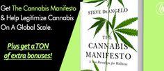 steve-deangelo-cannabis-manifesto-brealtv.jpg (620×270)