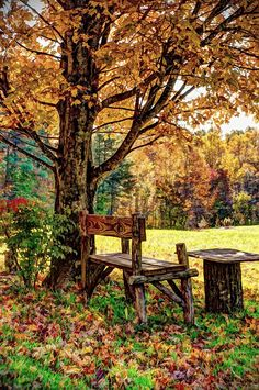 The post Country life 🌼 PS. autumn scenery appeared first on Trendy. Beautiful World, Beautiful Places, Beautiful Pictures, Autumn Scenes, Seasons Of The Year, Peaceful Places, Fall Pictures, Country Life, Country Living