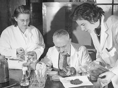 If the history of medical science can teach us one thing, it's this. Don't underestimate dirt. From ordinary backyard soil and composted compost have some of the world's most useful wonder-drugs.
