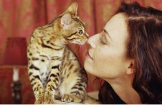 When you want a cat that behaves like a dog, use these tactics to train her to be obedient, affectionate, and loyal.