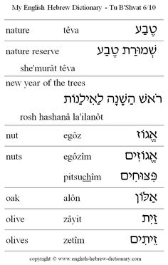 The main benefit of learning a second language is that of being able to communicate with others in their native language. Hebrew is considered to be one of the most difficult languages to learn and requires a lot of study but once mas Biblical Hebrew, Hebrew Words, Learn Hebrew Alphabet, Learn Hebrew Online, English To Hebrew, Learning A Second Language, Hebrew School, Religious Studies, Torah