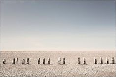 Beach Sentinels  sunbleached wooden posts on a by matthewbull, $35.00