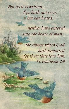 I Corinthians 2:9 scripture added to vintage postcard with bluebirds.  Free for personal use.  Praise the Lord :)