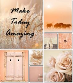 moodboard by AT Inspiration Wand, Inspiration Boards, Color Inspiration, Board Ideas, Collages, Pot Pourri, Shades Of Peach, Color Collage, Photo Images
