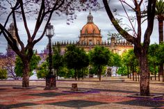 Cathedral Through The Jacaranda- Jerez