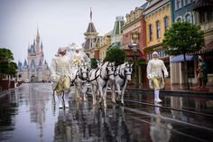 A fairy tale princess is awaiting the arrival of her Cinderella's Coach at Disney's Magic Kingdom. Photo: Ali, Disney Fine Art Photography