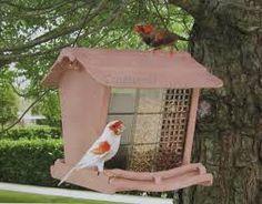 Die 10 Besten Bilder Von Vogelfutterstation Birdhouses Bird House