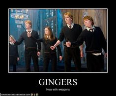 Fred and George Weasley Sexy | gingers - fred-george-ron-and-ginny-weasley Photo