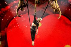 """P!nk's """"Truth About Love"""" tour comes to Seattle 