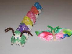 Caterpillar and Butterfly Preschool Theme