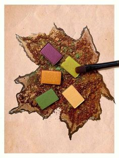 Mary Kay Fall Colors https://www.facebook.com/sarahskhan