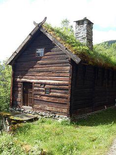 Norwegian Roof Garden