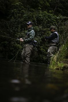 Want to learn all about fly fishing? Let Chris Jolly Outdoor's experienced fly fishing guides teach you the basics of fly fishing on our local rivers. Fishing Guide, Fly Fishing, Brown Trout, Charter Boat, Fishing Charters, New Zealand, Cruise, River, Explore