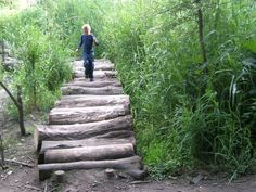 log path, for texture, variety and learning balance