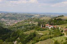 vineyards, hills of Monferrato, Piemonte (Italy)