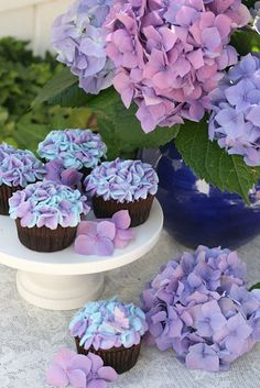 Hydrangea Cupcakes and real Hydrangea! Great way of decorating an Easter table! If you don't like purple or blue, hydrangea come in many other tinted colors like pink, green, yellow and peach: http://www.flowermuse.com/types-of-flowers/hydrangea.html