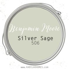 This has to be one of our favorite paint colors for a bathroom remodel! We can completely stand by Benjamin Moore paint colors and we use them on almost all of our remodels. Silver Sage Paint, Sage Green Paint, Green Paint Colors, Sage Color, Interior Paint Colors, Paint Colors For Home, House Colors, Paint For Walls, Paint Colors For Kitchens