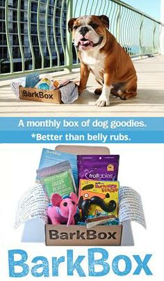 BarkBox // a box of puppy products, delivered to your door each month! Cute!