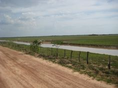 Llanos apureños. Apure-Venezuela