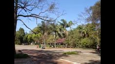 Parque Ibirapuera-Bairros Vila Nova Conceição,Ibirapuera,Itaim e Jd Paul...