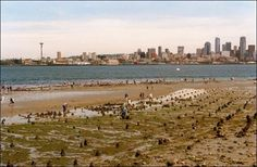 During extremely low tides, people can walk around the old Luna Park in West Seattle. Western Washington, Seattle Washington, Washington State, Time Lapse Photo, Tunnel Of Love, West Seattle, Photo Caption, World's Fair, Pacific Northwest